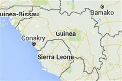 几内亚的翻译和本地化